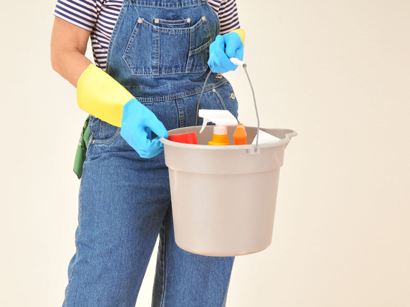 Woman in Overalls with Cleaning Supplies